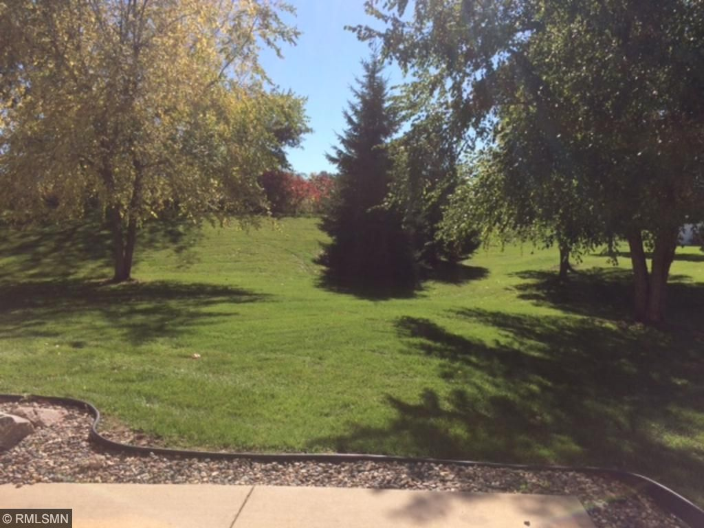 Parklike back yard with patio and lots of green space.