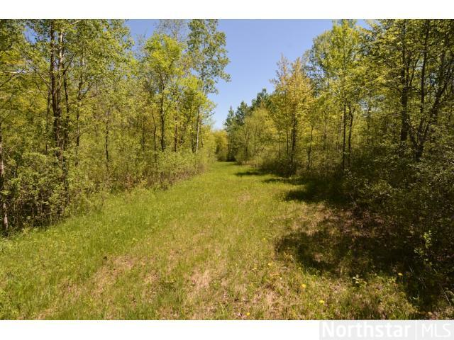 Owner has carved and maintained a wide access across the center of the property from east to west for easy access to hunt, shoot, explore or build!