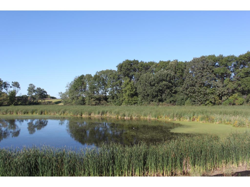Enjoy the ponds, wetlands and trees that nature provides Kenwood Hills