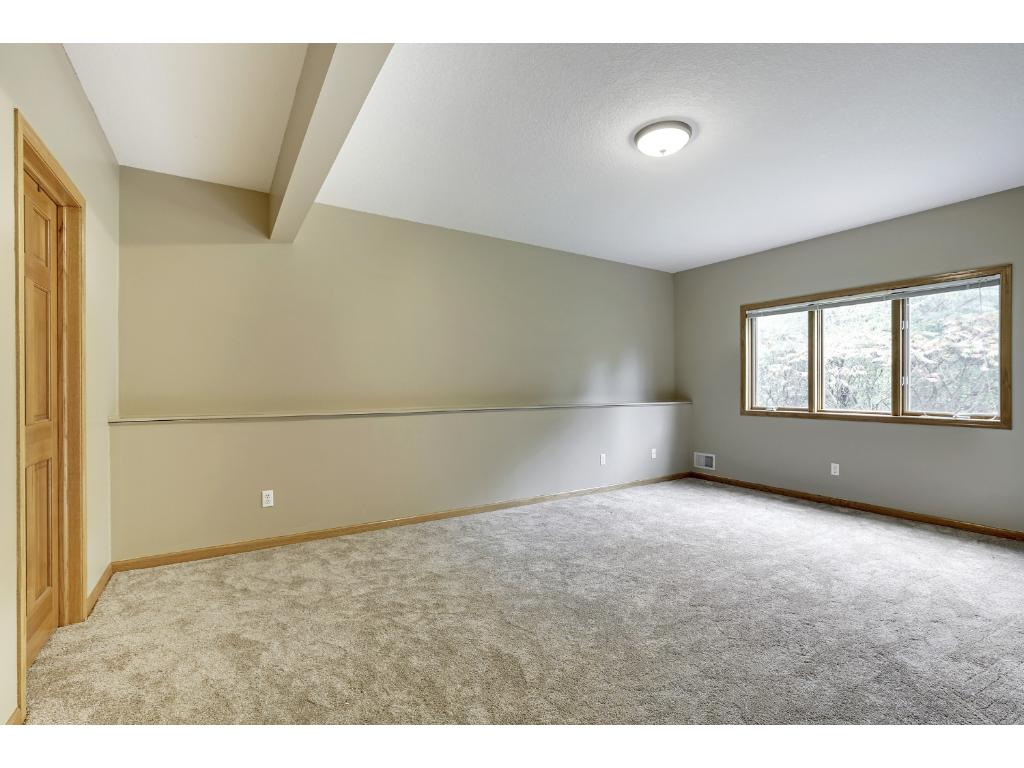 One of two bedrooms in the lower level.  Huge closet and nice natural light