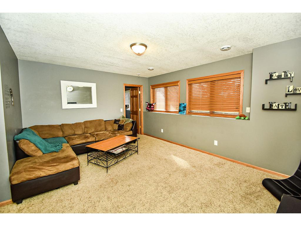 Large lower level family room. Look out windows.