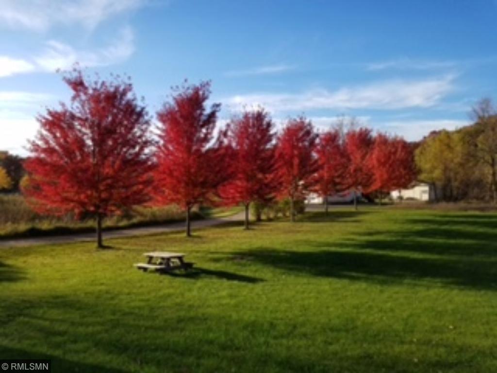 Beautiful fall view of the yard.