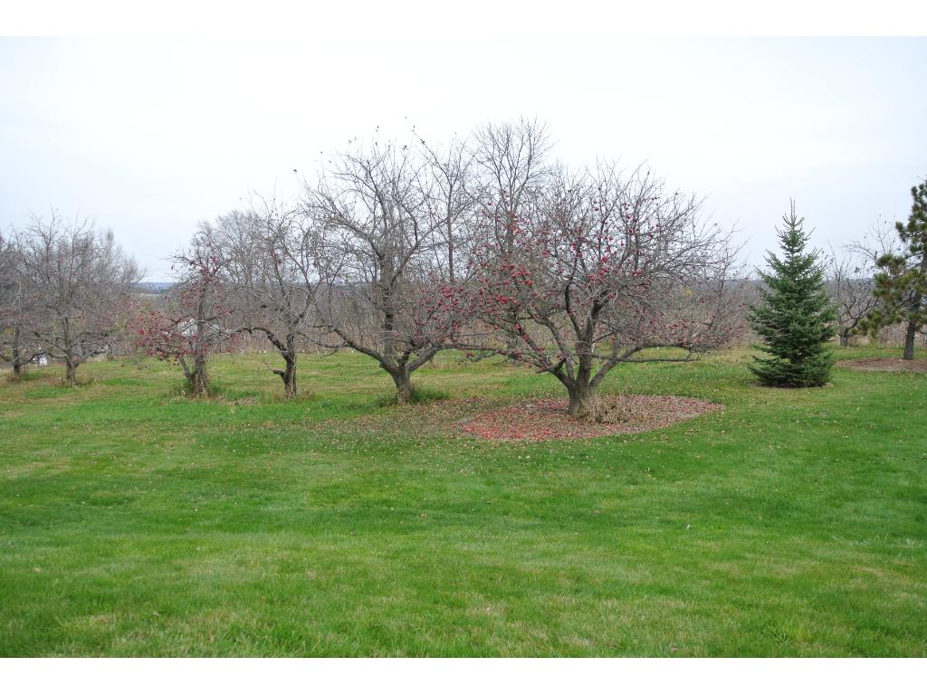 Side yard has a variety of apple trees This small country neighborhood was part of the original Deer Lake Orchard.