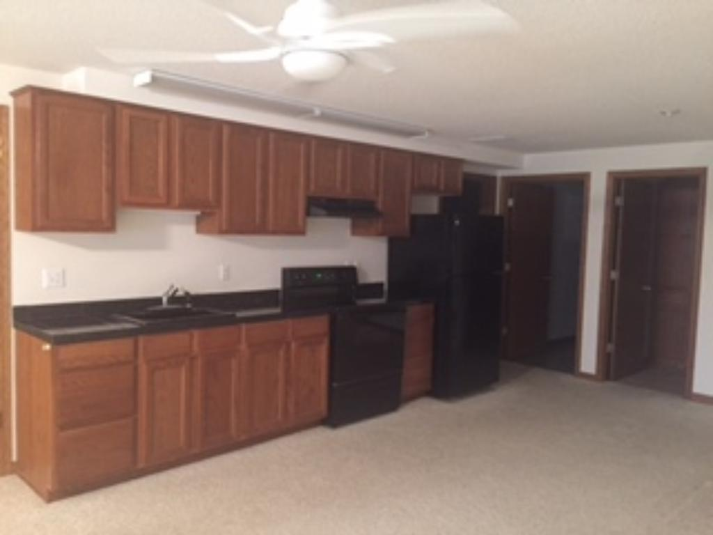Walkout lower level includes a 2nd kitchen with full-sized stove and refrigerator.