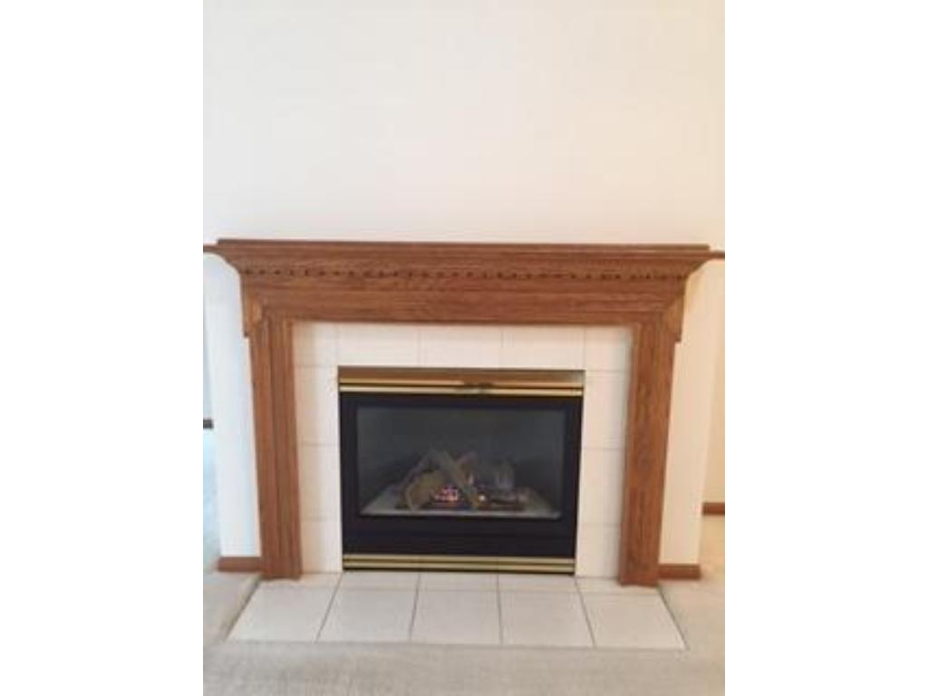 Gas fireplace in the main-floor living room which adjoins the dining room.