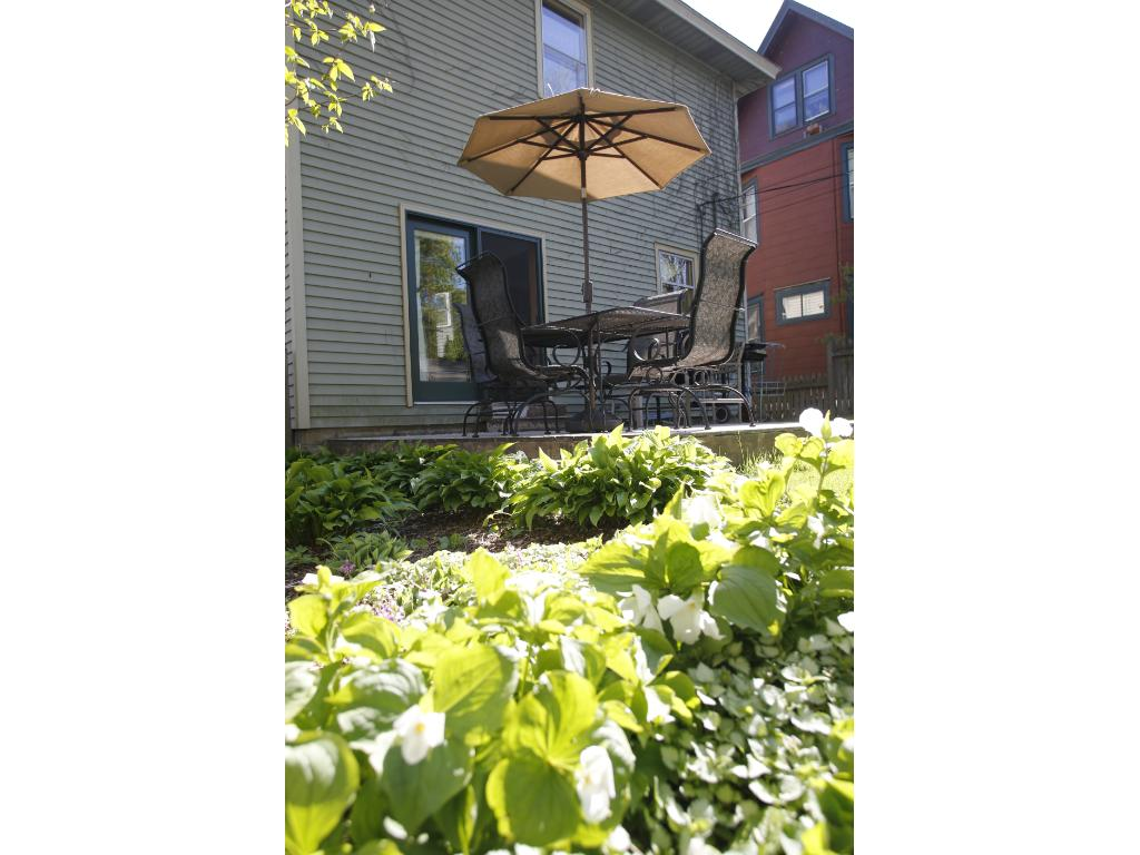 Back deck and gardens