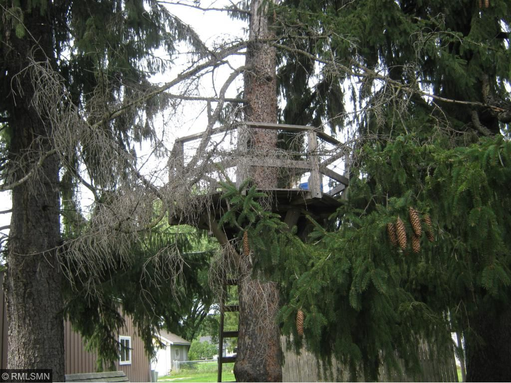 Treehouse for the kid in all of us