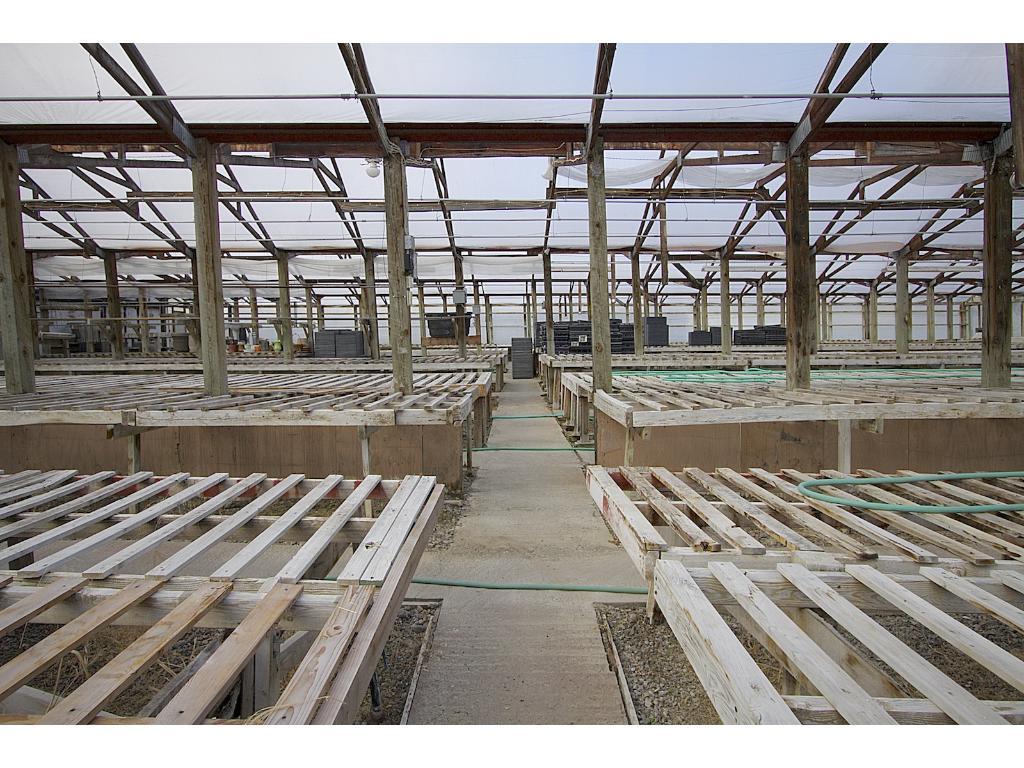 Heated greenhouses