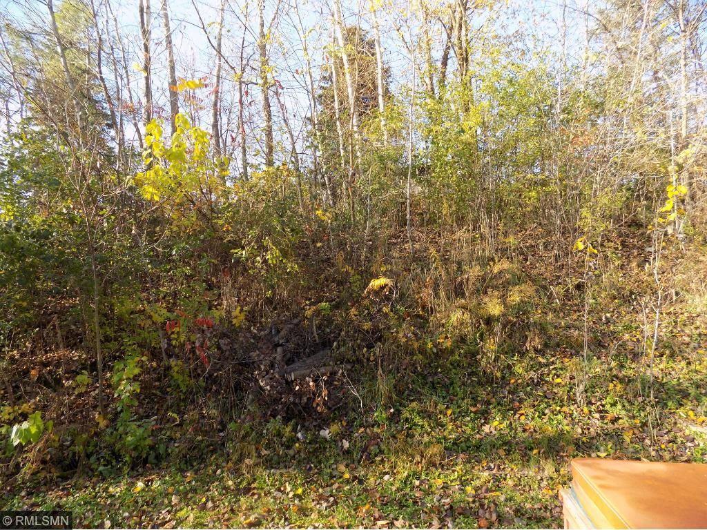 Large Lot has room to grow in back