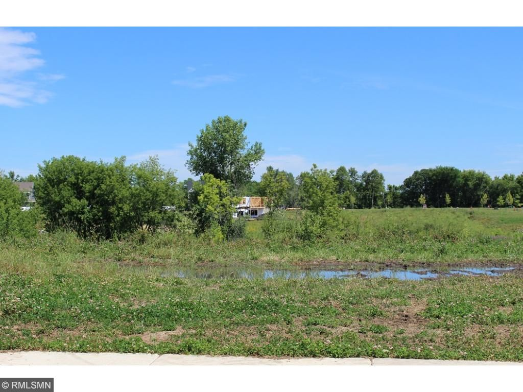 Lot with woods along property line - many lots to choose from