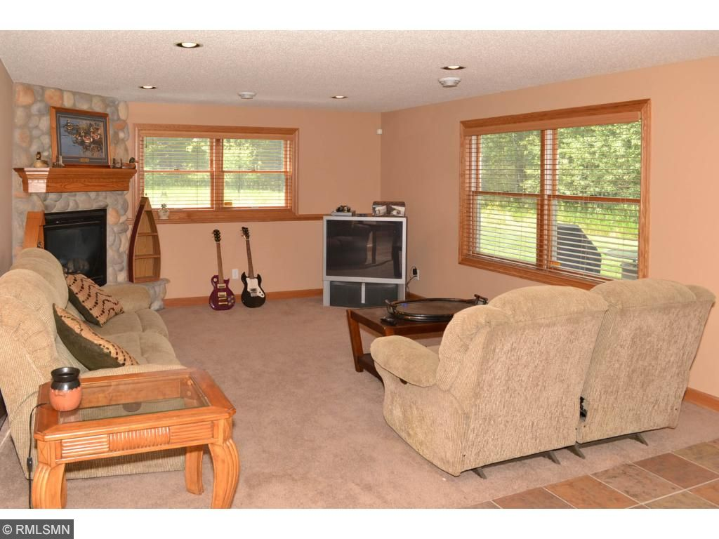 Lower level family room with gas fire place.