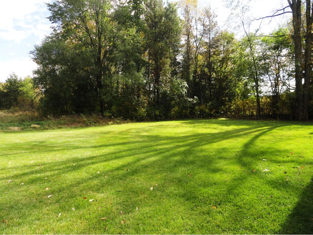Back yard is large and private.  State park reserve is behind part of the back yard giving beautiful views of nature.