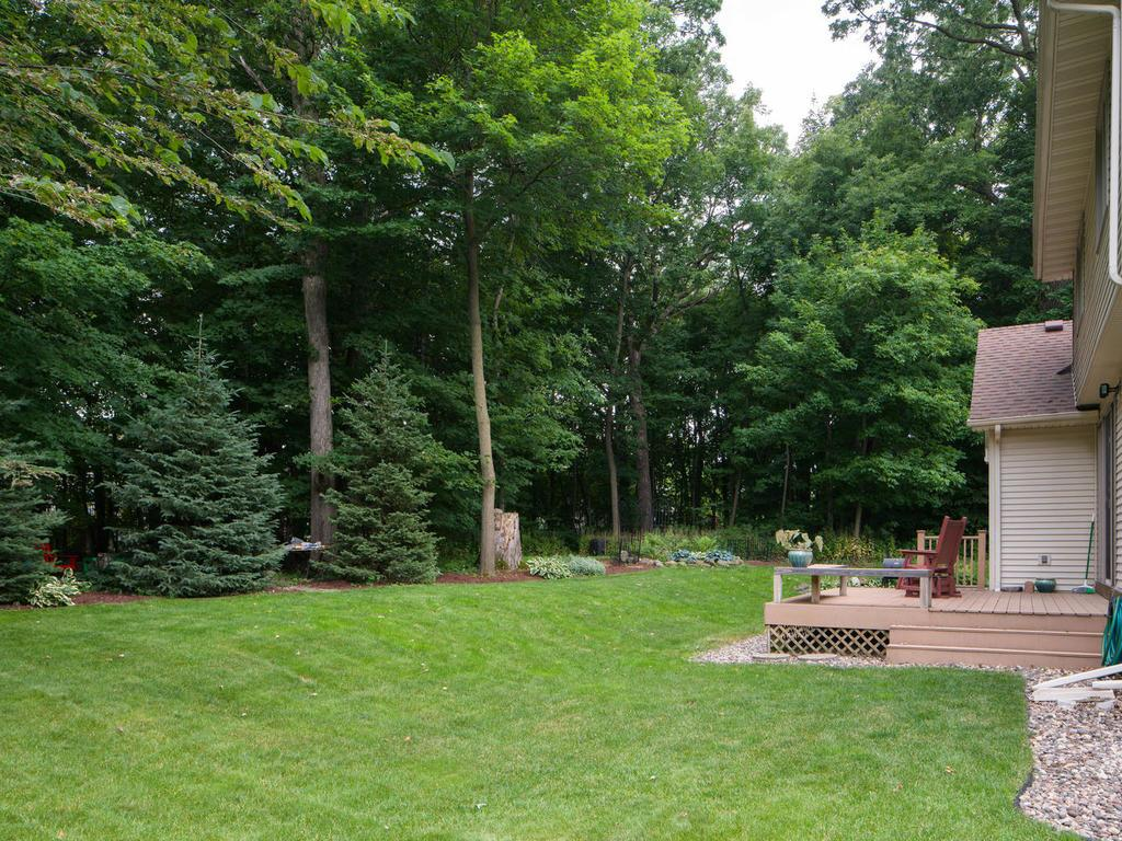 Playable backyard with gorgeous trees and privacy.