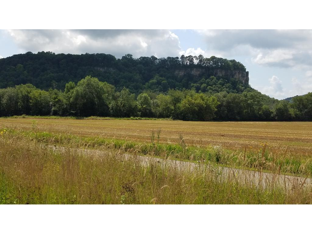 One of the best features that separates this property from most other Wacouta properties is that not only is the river view great but Rattlesnake Bluff is out your back yard!
