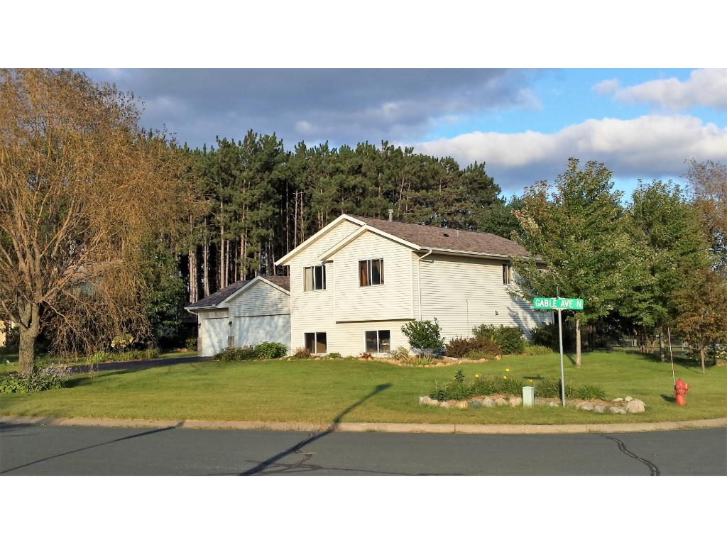 31357 Gable Avenue Stacy MN 55079 4911744 image1