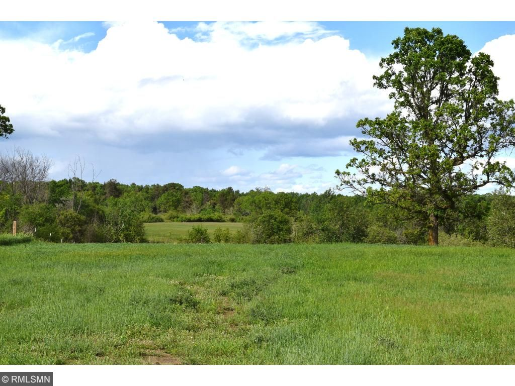 A view of your 10 acres, good hunting deer and turkey if that fits your style.