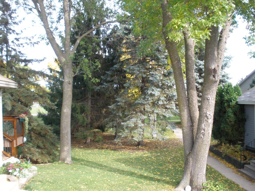 View from patio doors and off deck.  Association takes care of lawn including spring and fall clean up, fertilizing, mowing, tree trimming...