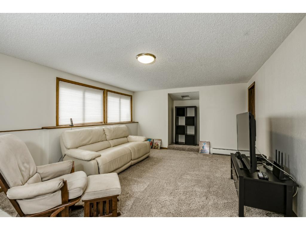 Lower Level Family Room With Walk Out