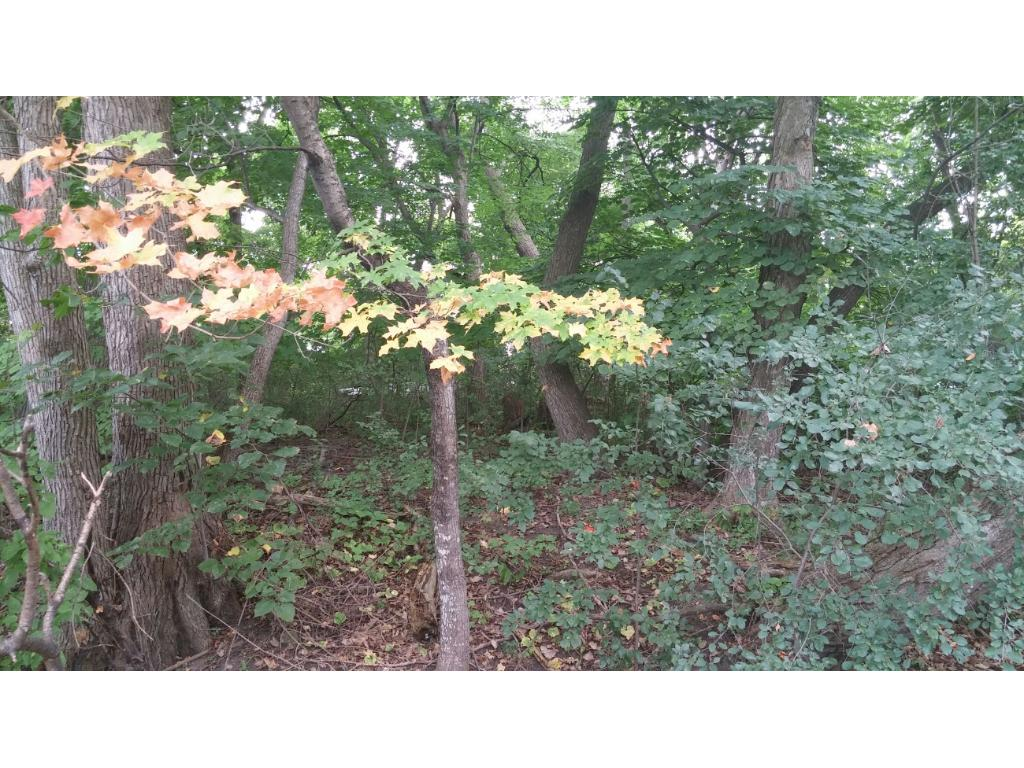 This heavily wooded lot means you choose how much you would like to leave for added privacy, with still plenty of space left for any size home & surroundings you imagine!