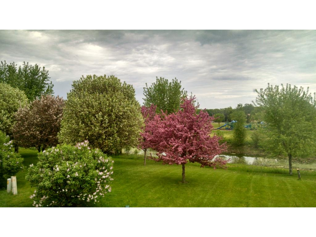 Look at these breathing views the seller captured one spring!!  This could be your views!!!
