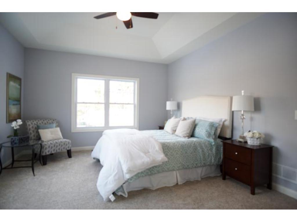Main Floor Master Suite has Tray Ceiling, Walk-in Closet and sumptuous Bath area