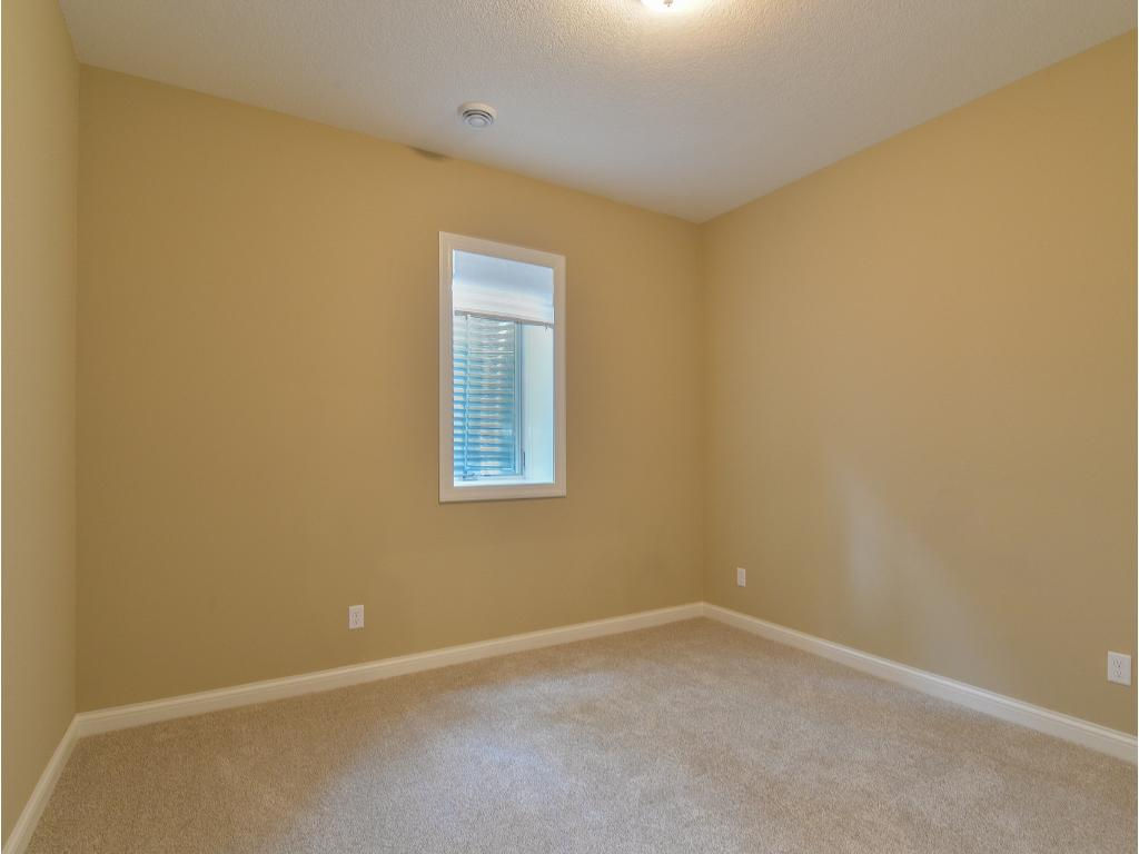 Lower Level Bedroom #1 - Note: 10' Ceiling height!