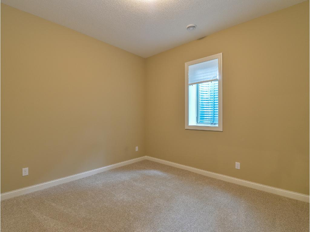 Lower Level Bedroom #2 - Note: 10' Ceiling height!