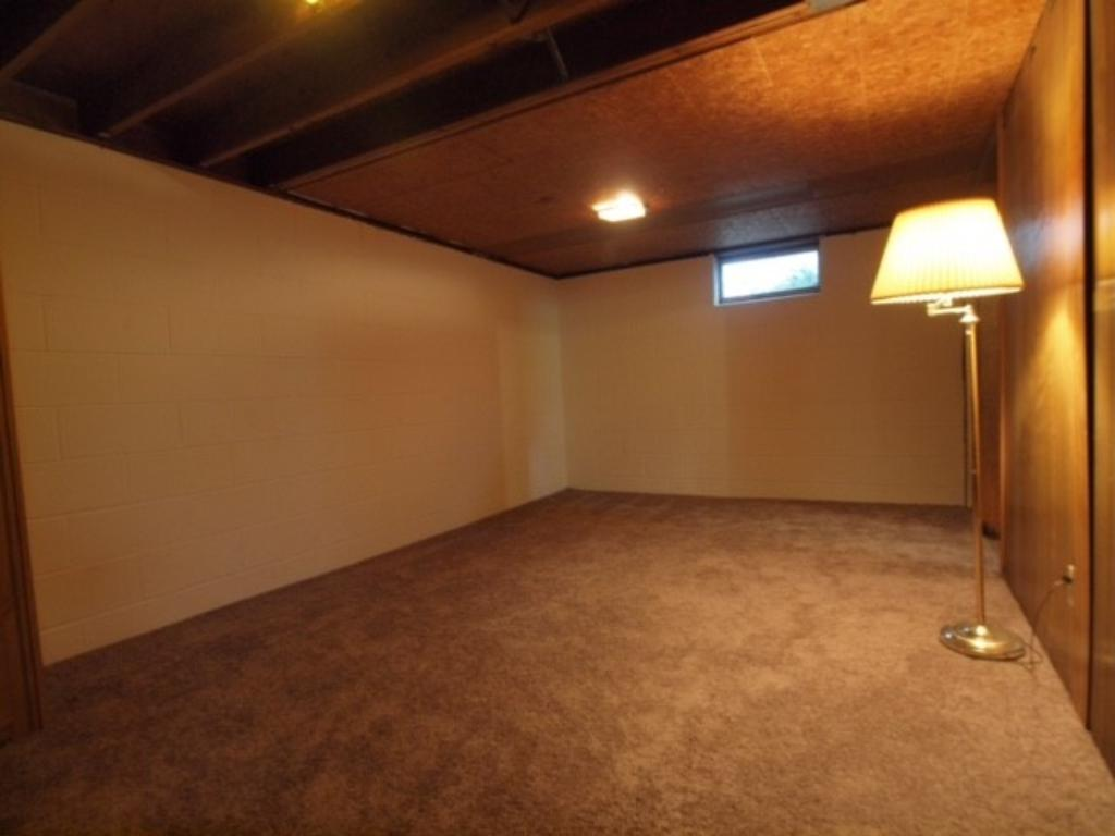 Newly carpeted, painted and paneled lower level family room