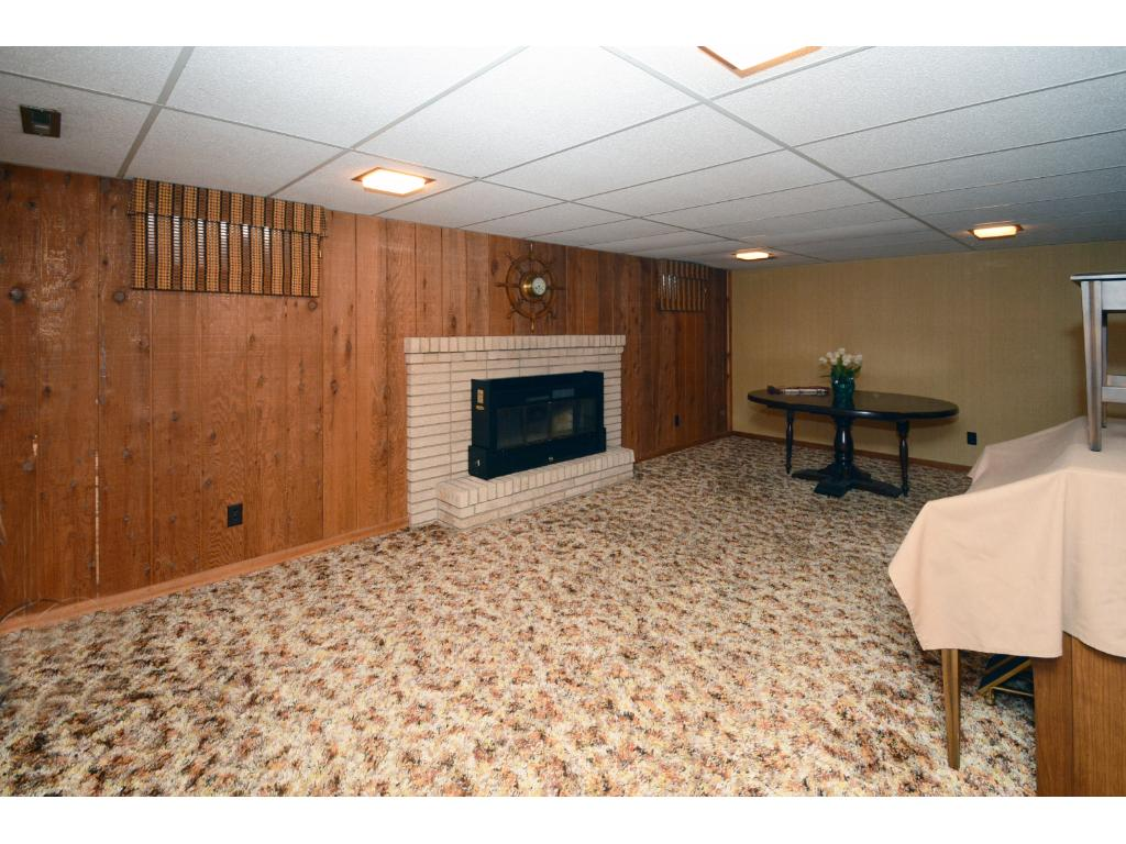 Lower Level family room with additional fireplace