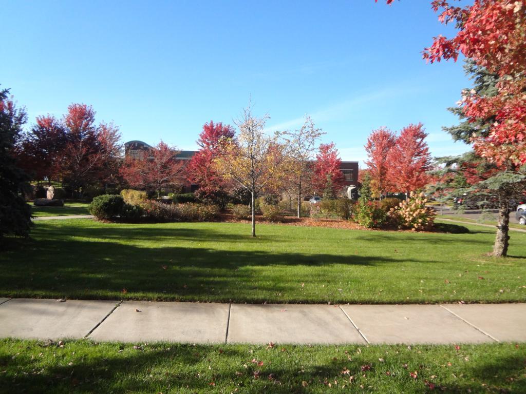 Beautiful Grandview Square Park - Across the park is the Edina Library & the Senior Center