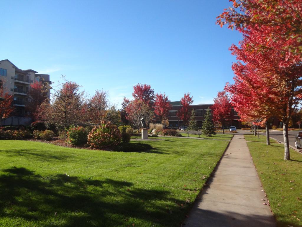 Beautiful Grandview Square Park -- Walk to Jerry's of Edina grocery & hardware stores, Starbucks, Walgreens, Edina Liquor Store, Wells Fargo, Dentists & Doctors, & many other stores