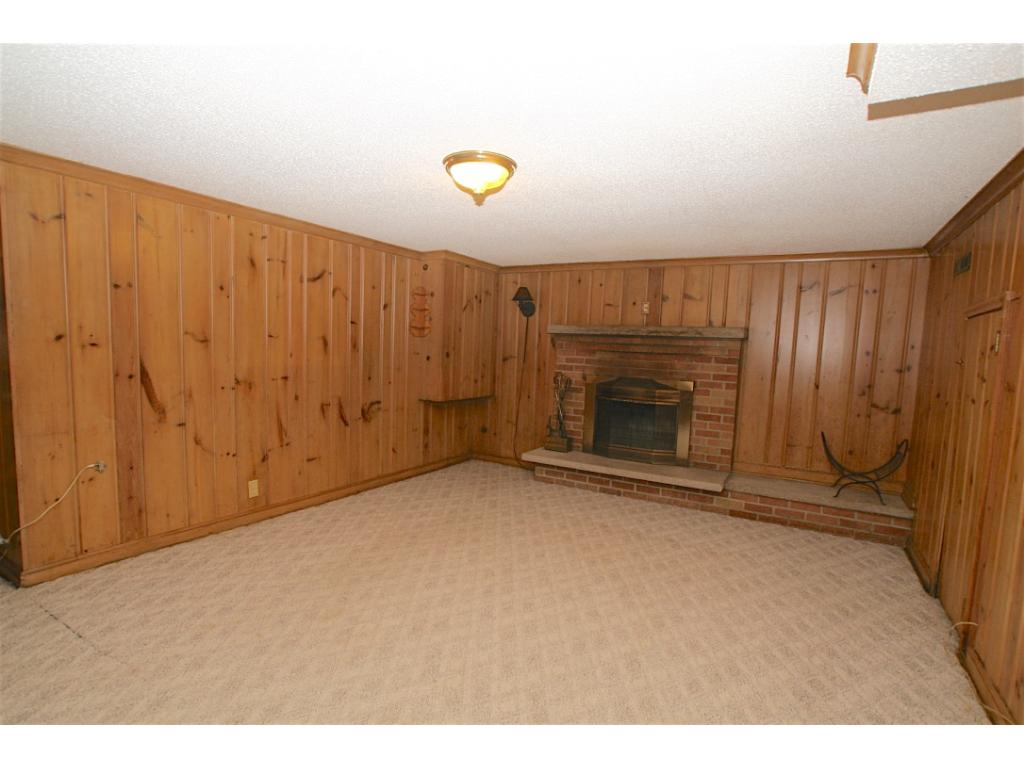 Lower Level with Fireplace