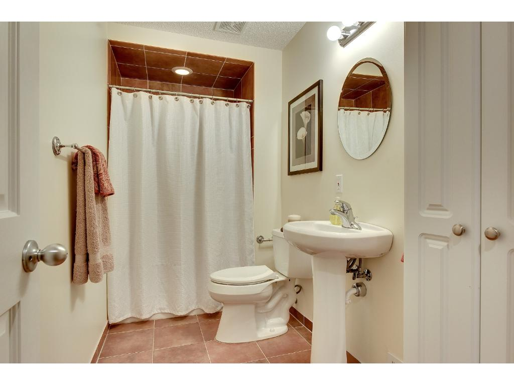 Lower level bathroom.