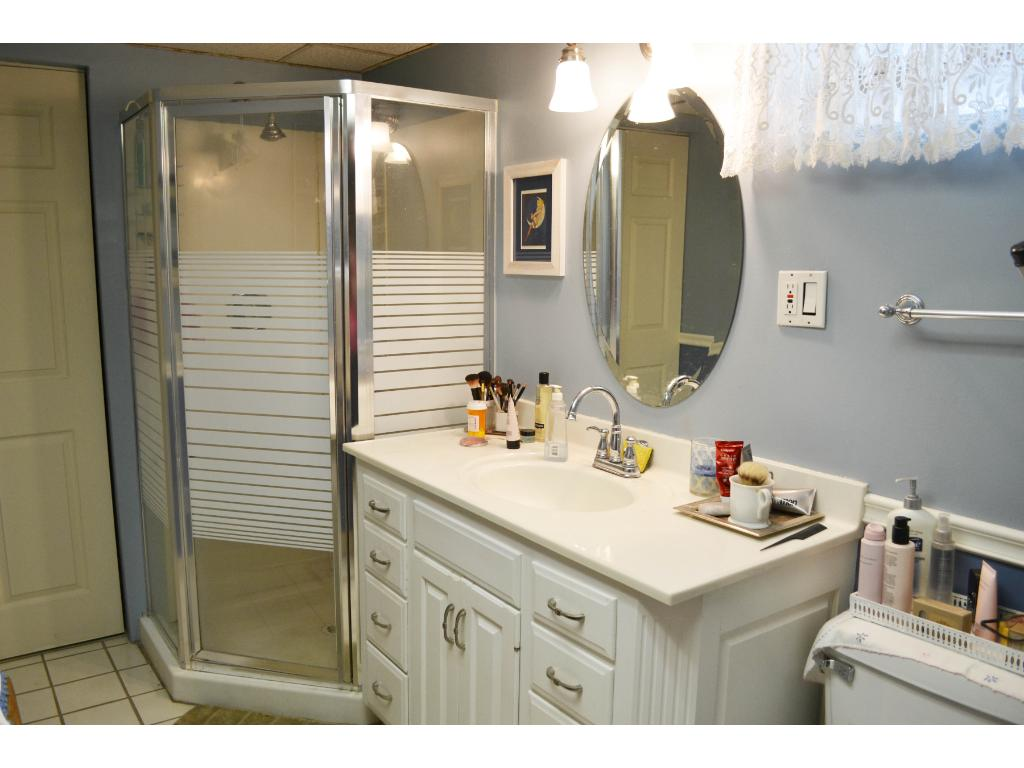 Updated bath with shower in lower level