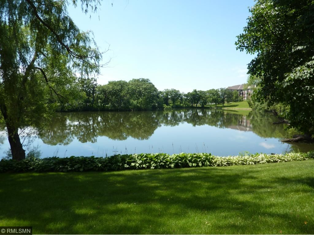 Peaceful pond off of patio