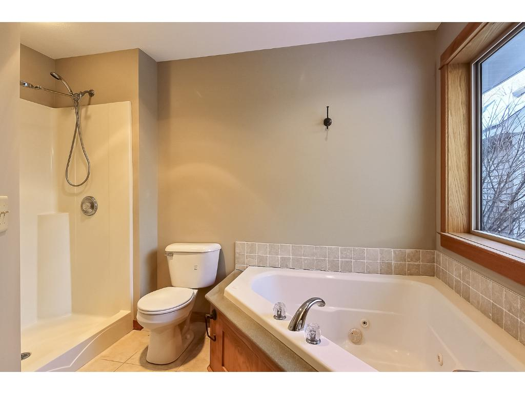 Lots of natural light in master bath