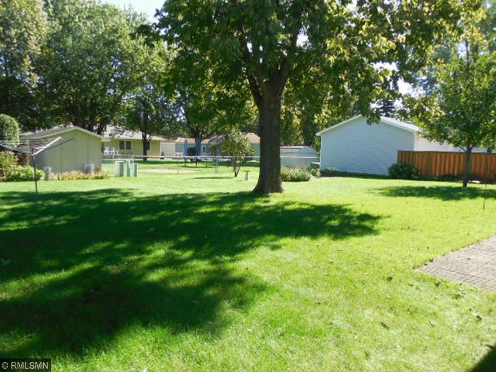 Nice shade trees in the back yard.