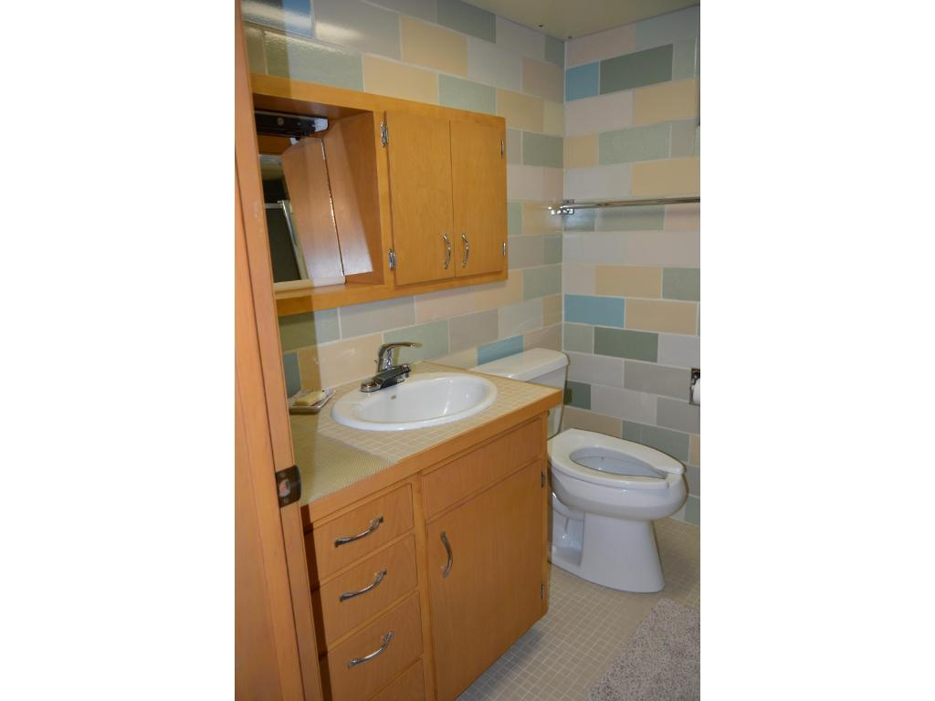 Lower level bathroom with tiled shower.