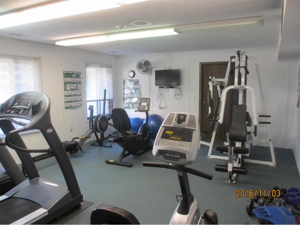 Workout room with two treadmills, rowing machine, free weights, dumbbells, and bike.