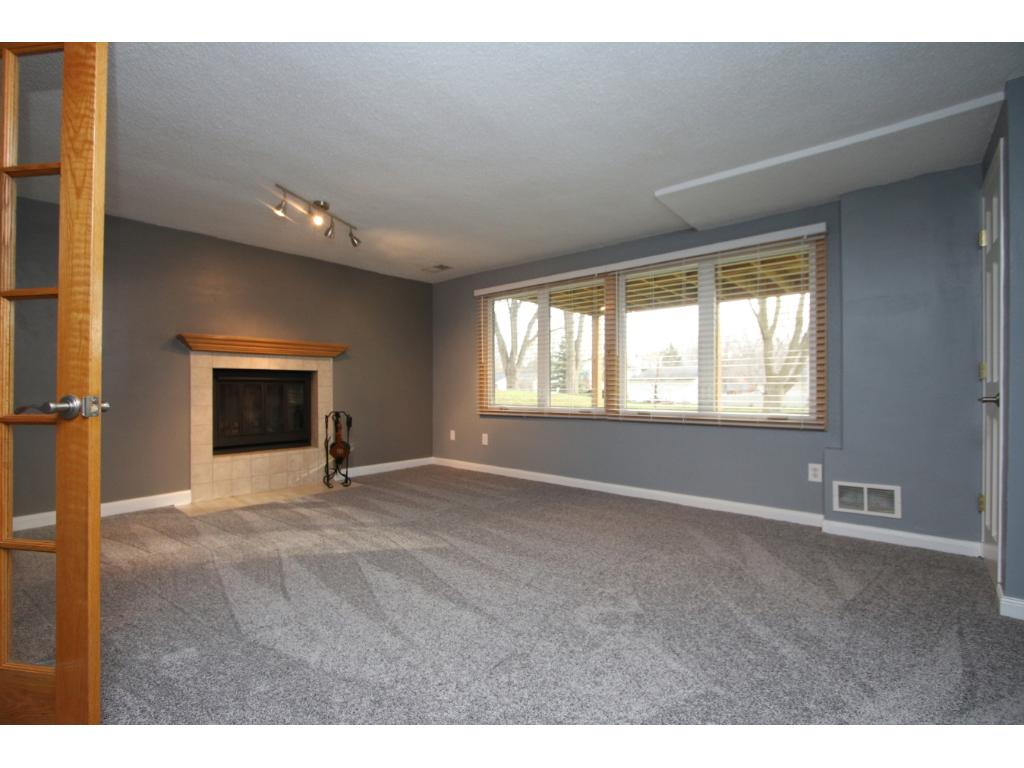 Family room with wood burning fireplace in the walkout lower level.  Freshly painted and new carpeting.