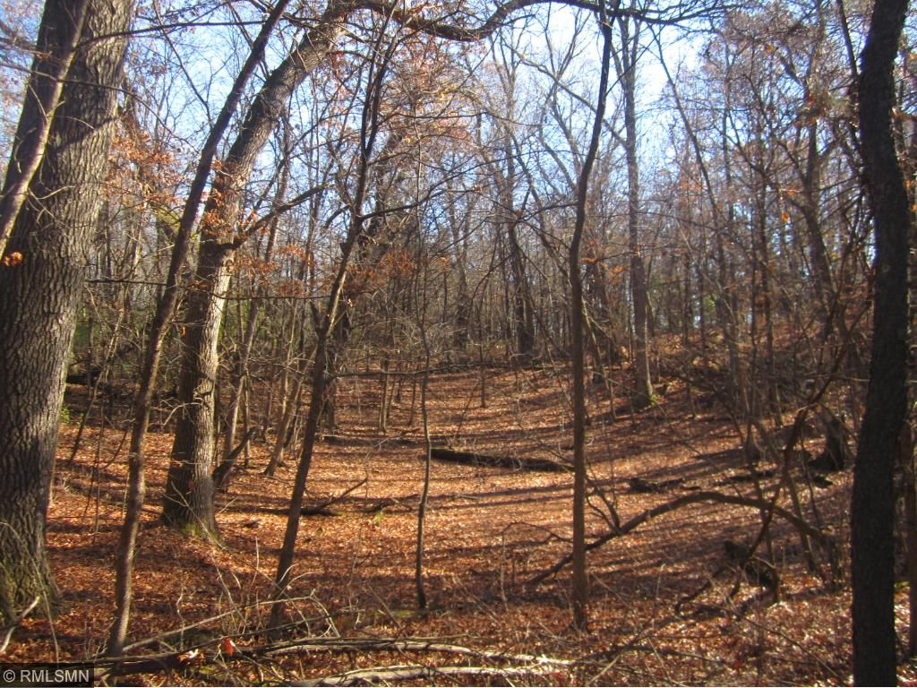 Woods are on the back side of the acreage. Use as your deer hunting spot until you decide to build your new home.
