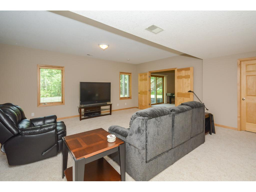 Large lower level Family Room with walkout