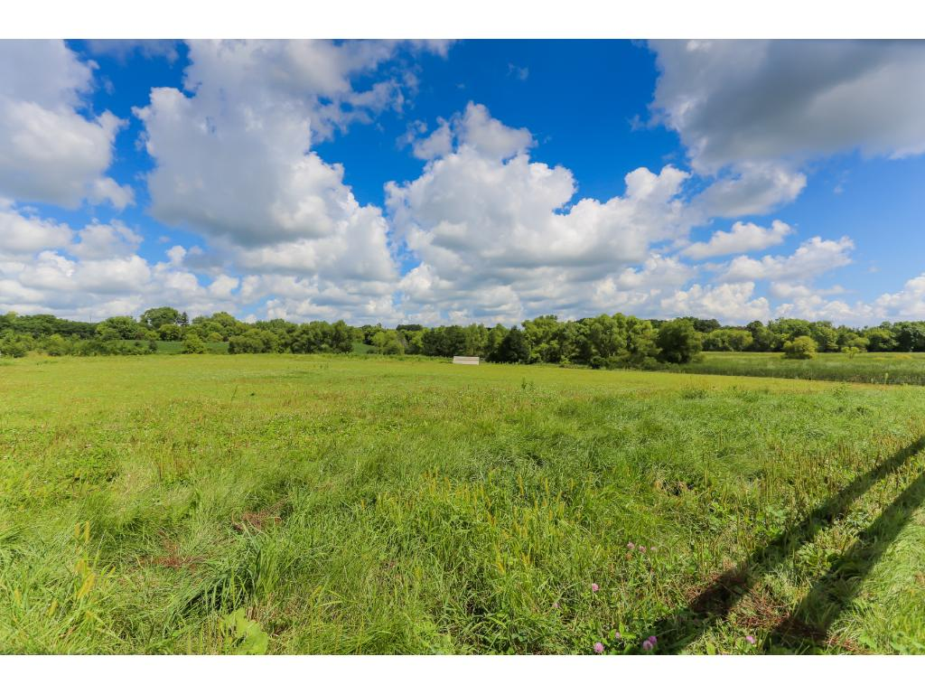 Beautiful Setting and Acres of Rolling Hills, Woods, Wetlands, Pastures & More