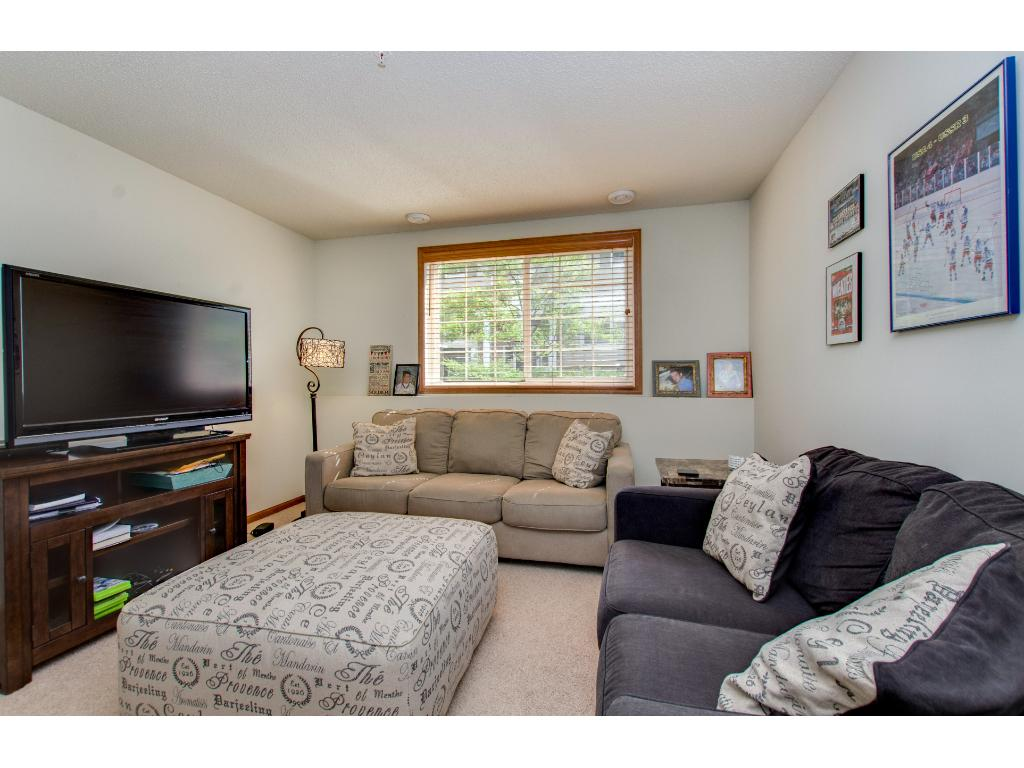 The lower level Family Room is nicely appointed.  Furnishings are available for sale.