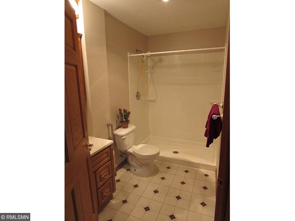 Large shower in Lower level Bath