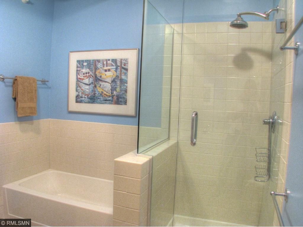 Master Bath w/ walk-in shower and separate tub