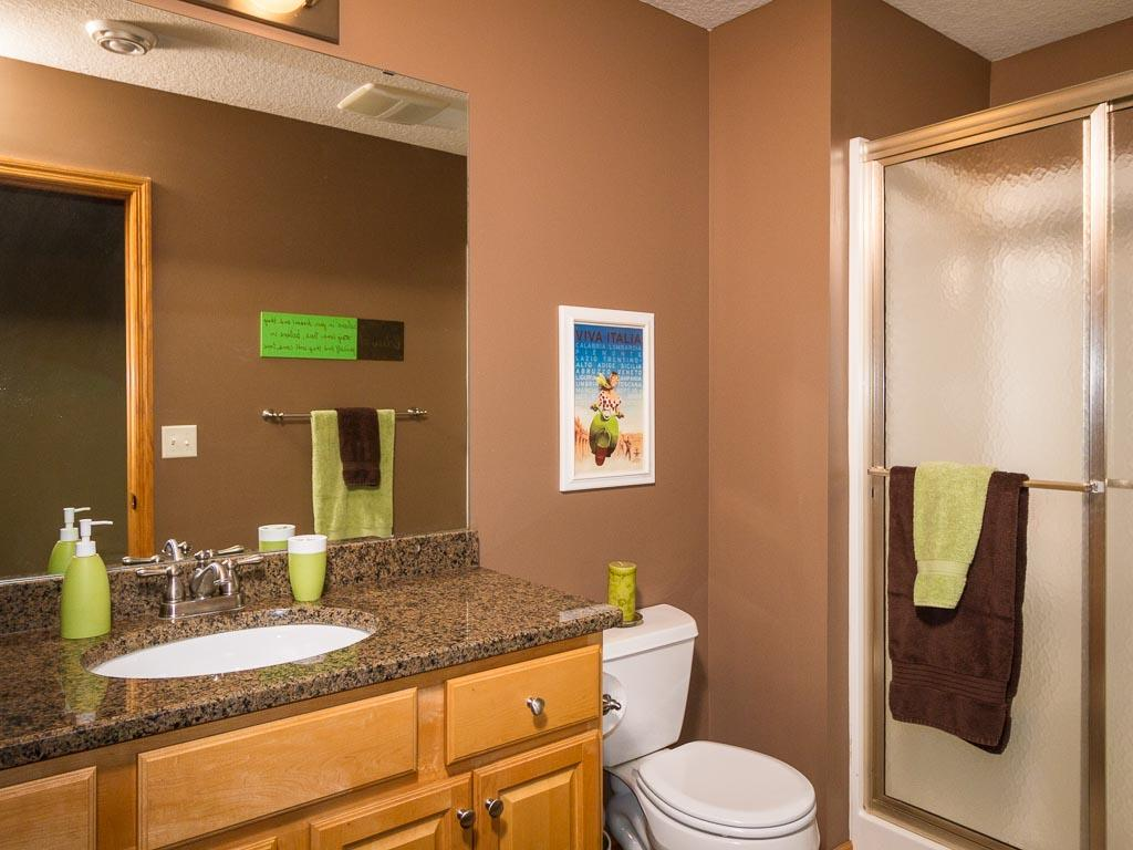 Lower level bath with walk in shower and granite counter.