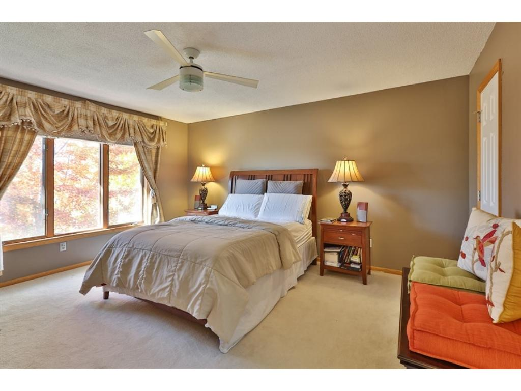 The Master Bedroom with a walk-in closet.