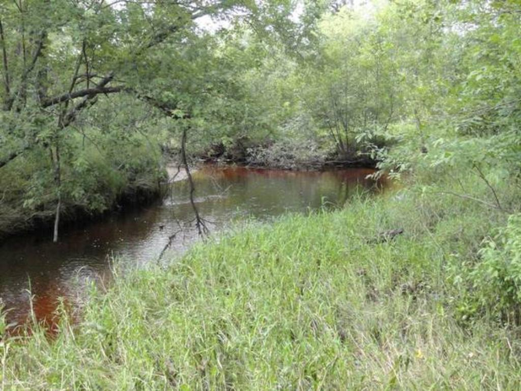 Tranquil & serene setting w/ creek/trout stream running through the west end of the property! Enjoy plentiful trout fishing just steps from your front door! Abundant area wildlife species include: deer, bear, turkey, grouse, beaver, otter and more!