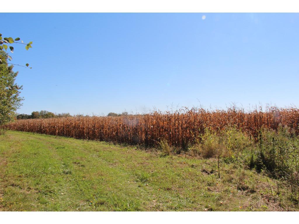 10 acres tillable planted into corn